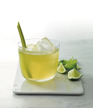 Celery Cilantro Cocktail Recipes — Dishmaps
